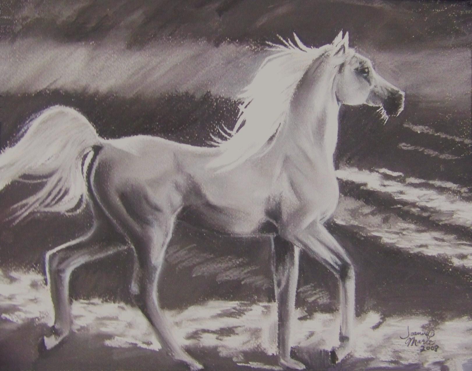 Prance, 2008, 11x14, Oil Pastel