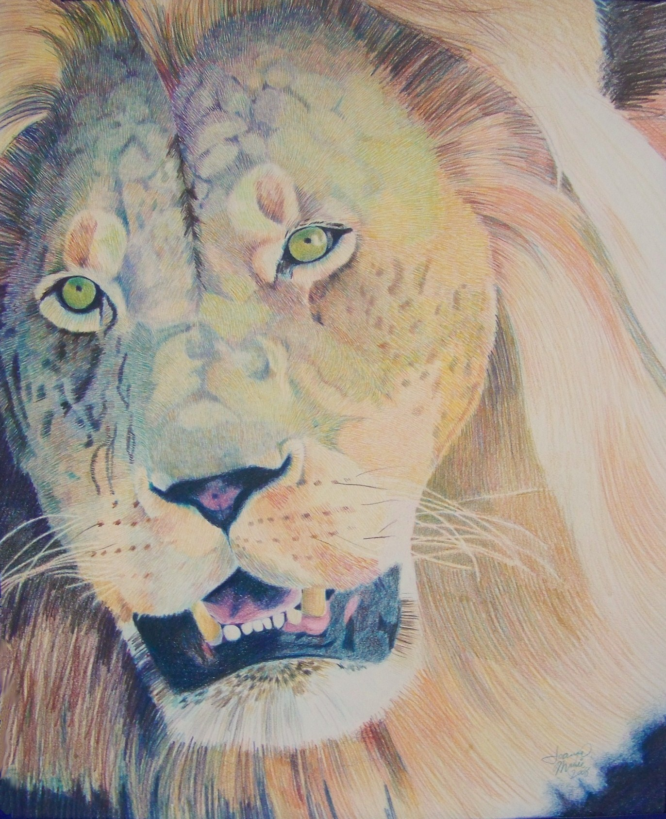 Golden Courage, 2008, 16x20, Colored Pencil